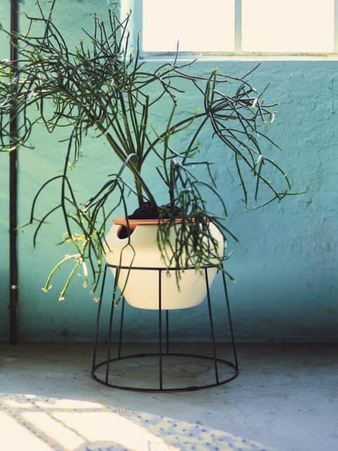 ikea's new ps 2017 collection | plantas, macetas y verde