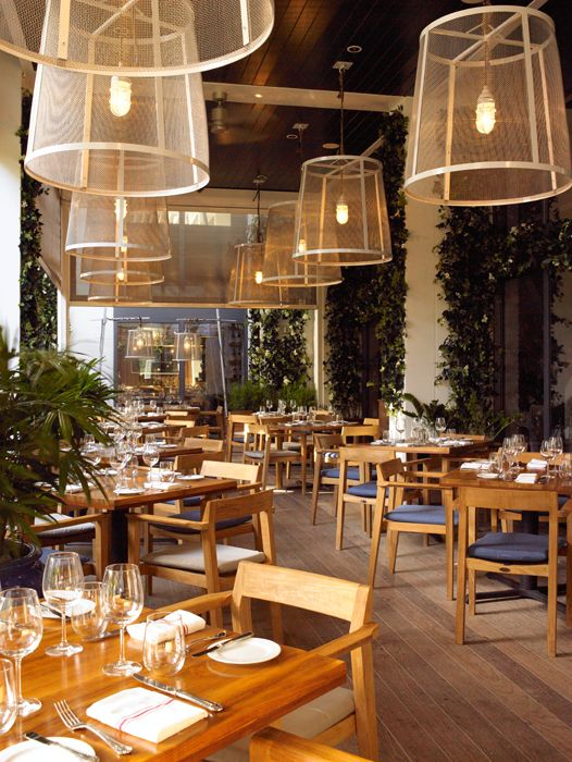 The Dutch At W Hotel In South Beach Has Announced The Appointment Of Adonay Tafur As Its New