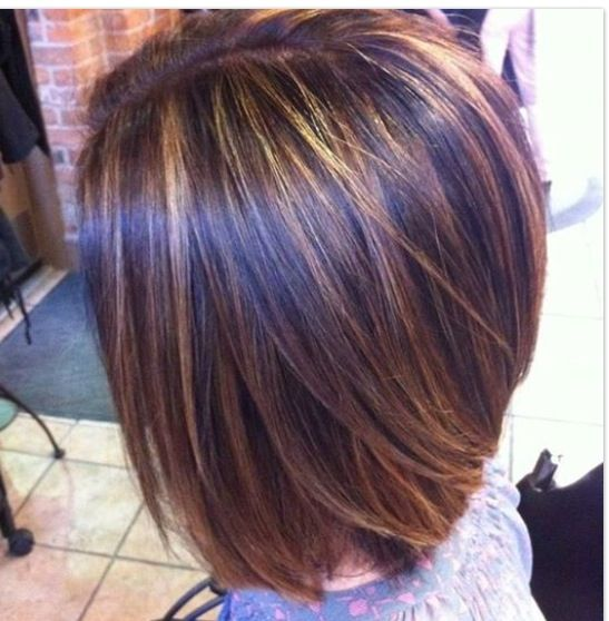Highlight Hairstyles Bob Cut With Highlight Gorgeous Hair Styles  Pinterest  Bob