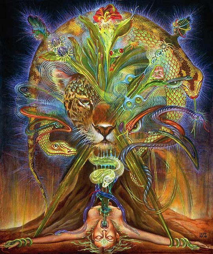 martia hoffman dmt - Google Search | new demigods and goddesses