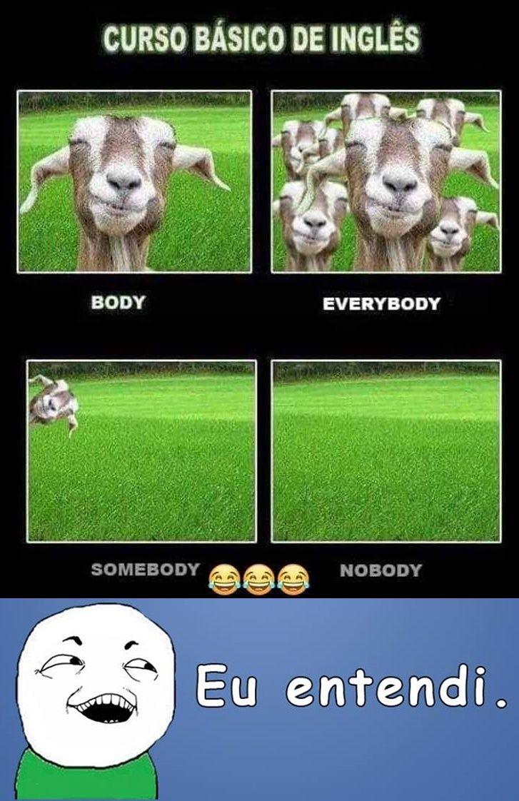 Aula Basica De Ingles Funny Memes Funny Gif Memes