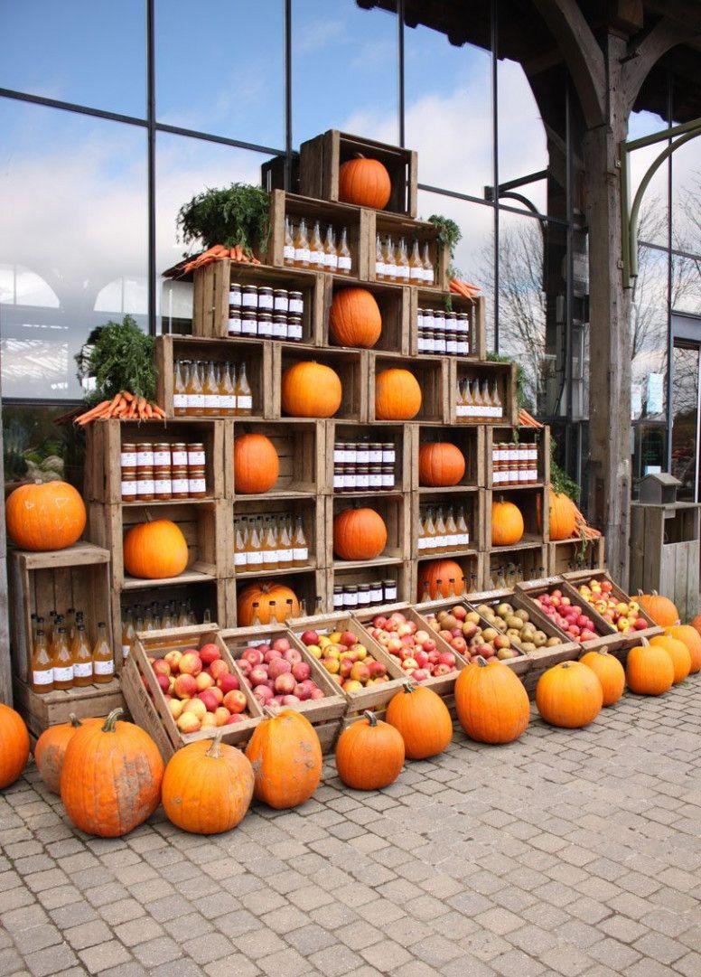 Table Ferme De Gally   Outdoor, Pumpkin patch, Pumpkin