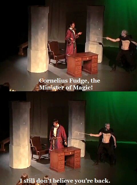 This is basically the best scene ever. (A Very Potter Musical) (that last sentence was what fudge said)