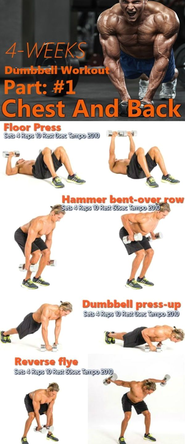 Crunch Fitness Personal Trainer Dumbbell workout plan
