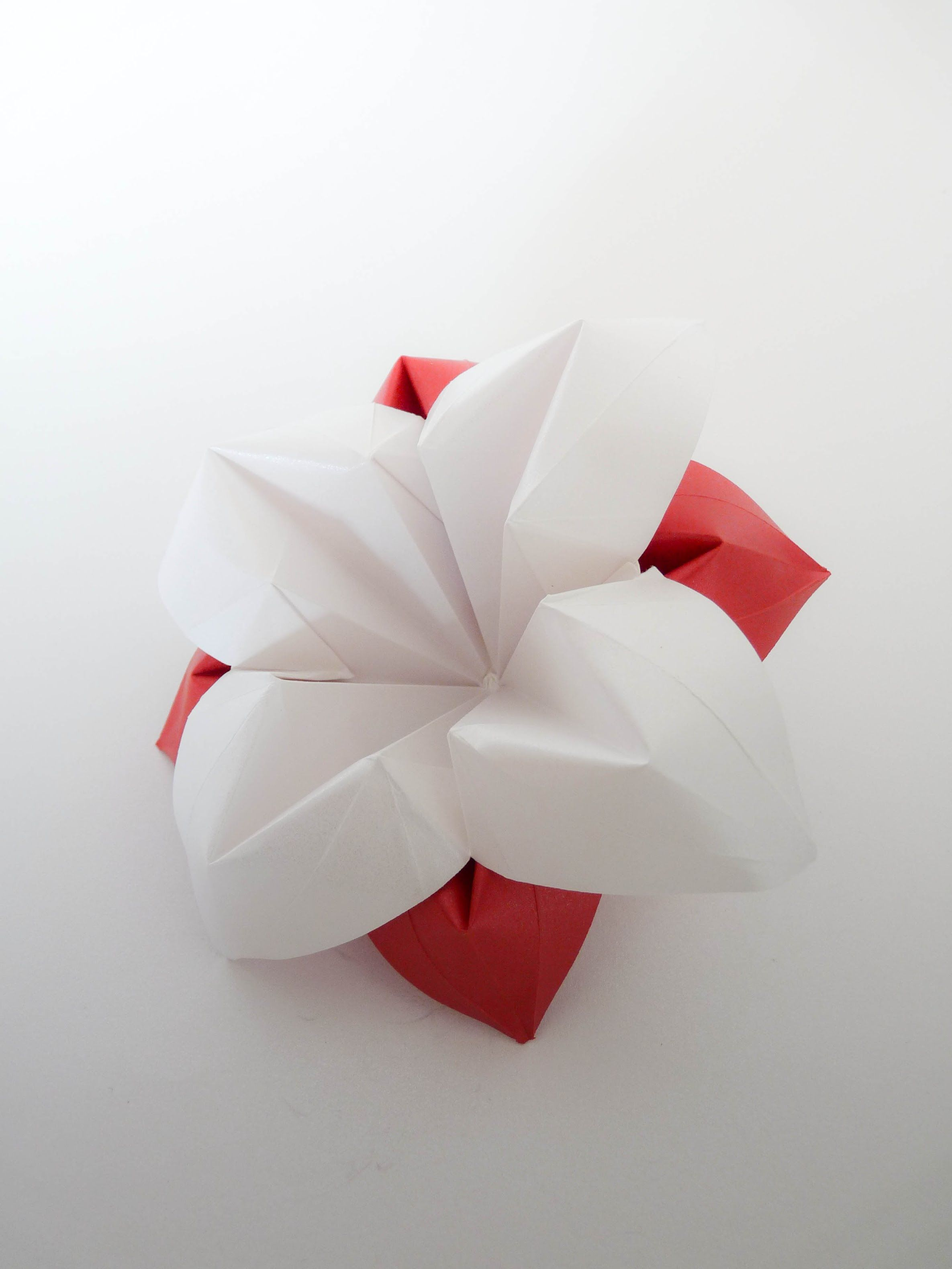 Origami Flower Vicente Dolz Gonna Make These All Pinterest Bird Curler Diagram Kusudama Me Craftsorigami