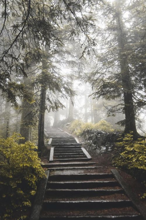 abovearth: Untitled by zackkcore