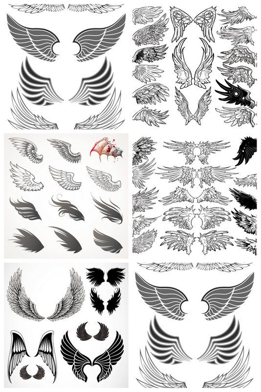 wings templates vector 5 sets with different vector wings templates