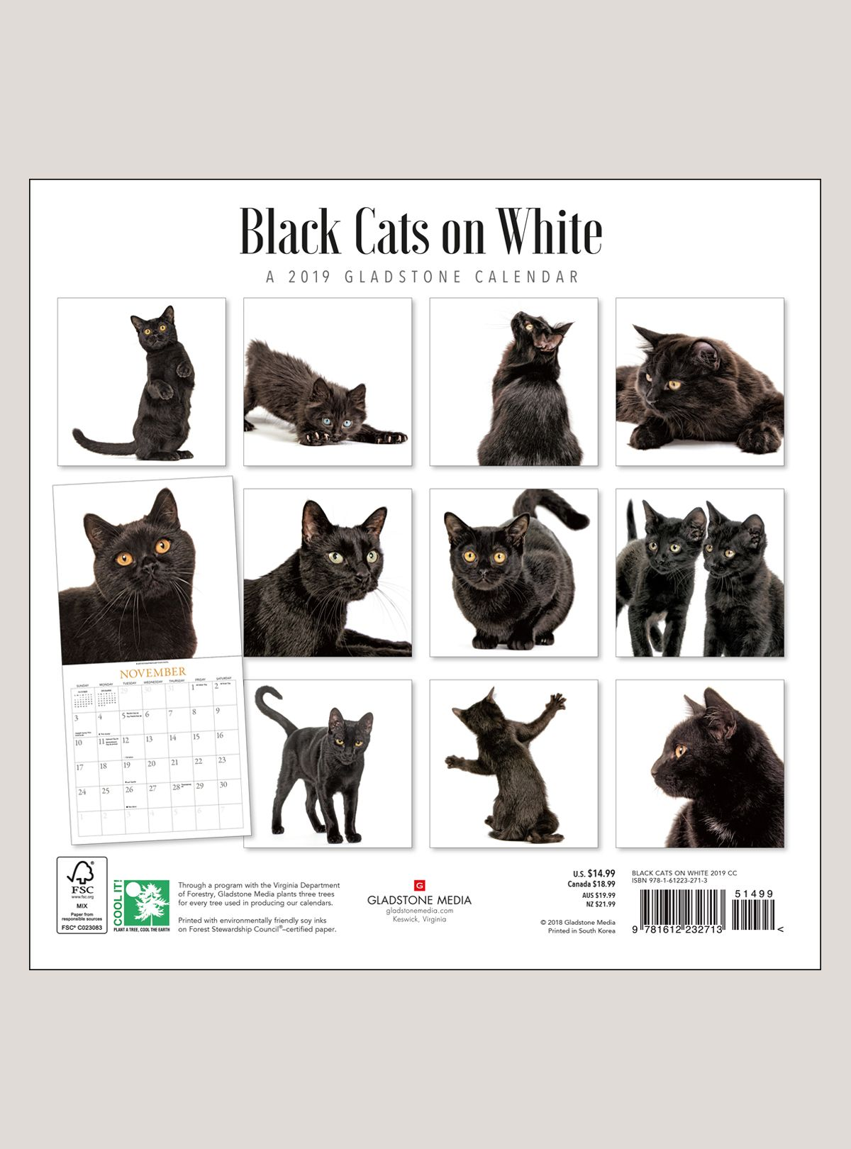 "2019 Black Cats on White 12"" x 12"" WALL CALENDAR Black"