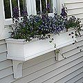I would love these window boxes to spruce up the curb appeal of our house... they even come with a self-watering device, so I may not be able to screw them up :)!