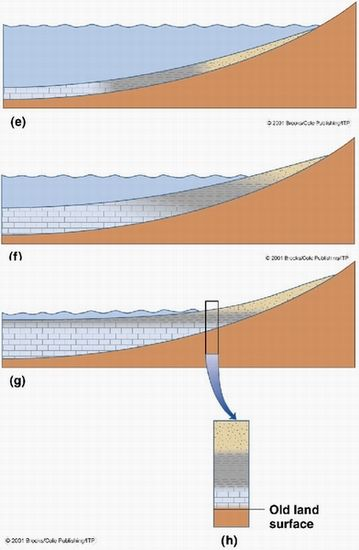 How To Identify Transgression And Regression In A Sedimentary Outcrop Geology Sedimentary Geology Rocks