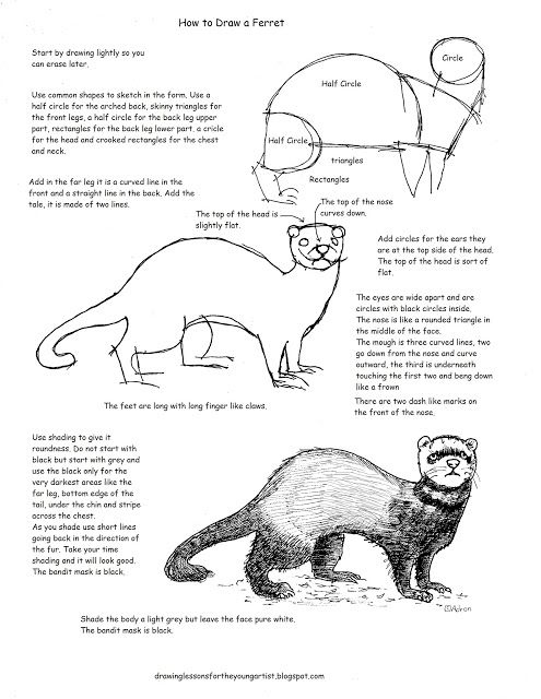 How to Draw Worksheets for The Young Artist: Printable How To Draw A ...