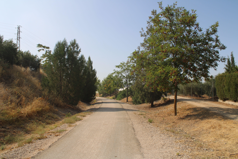 tramo entre el paso a nivel de la carretera de santiago y el puente que cruza sobre la carretera