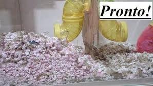 Resultado de imagem para caixa organizadora hamster