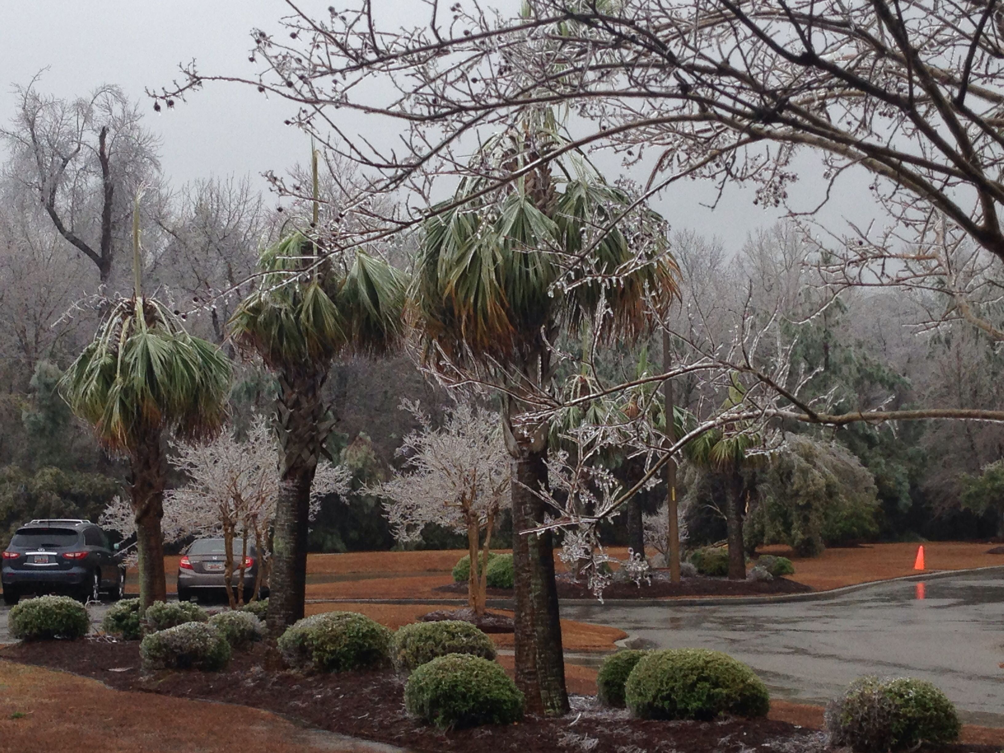 After The Ice Storm At Quoizel Goose Creek Sc
