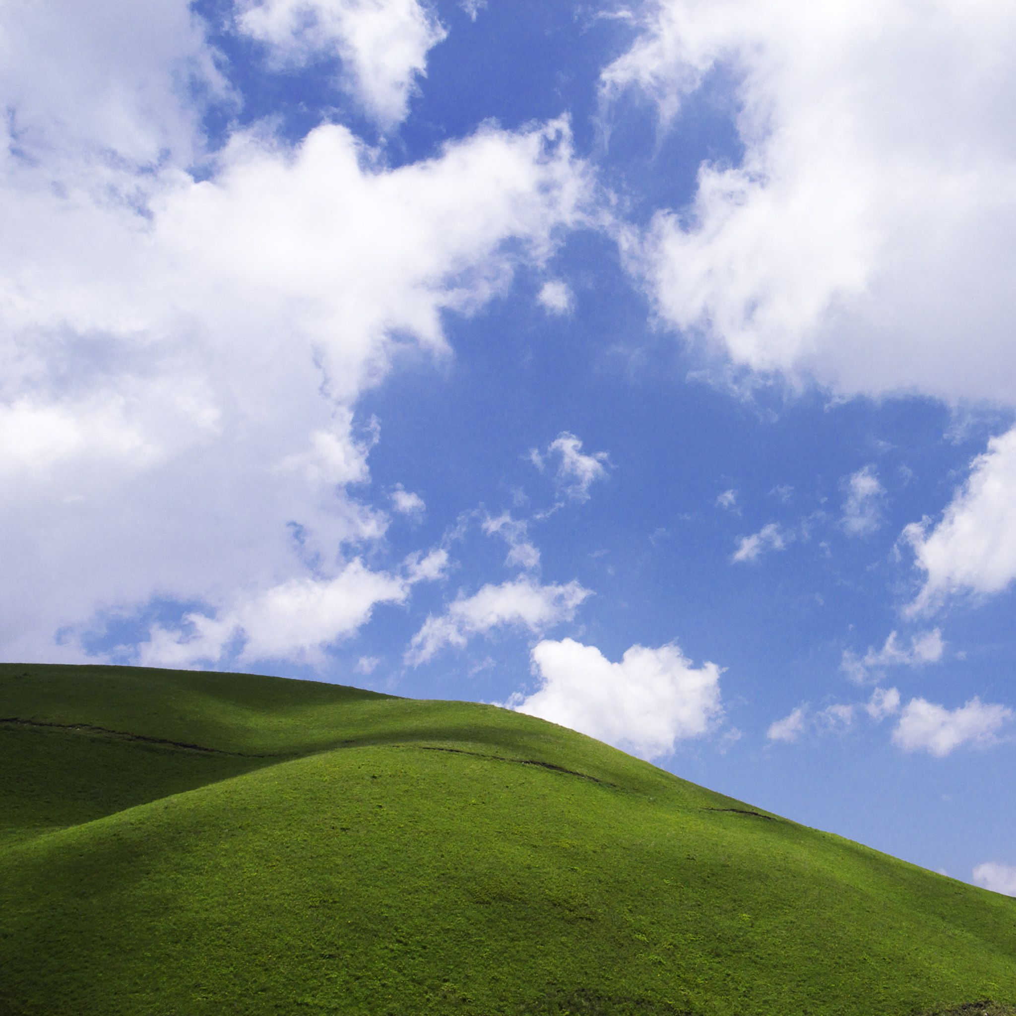 grass and sky backgrounds. Blue Sky And Green Grass IPhone Backgrounds Pinterest