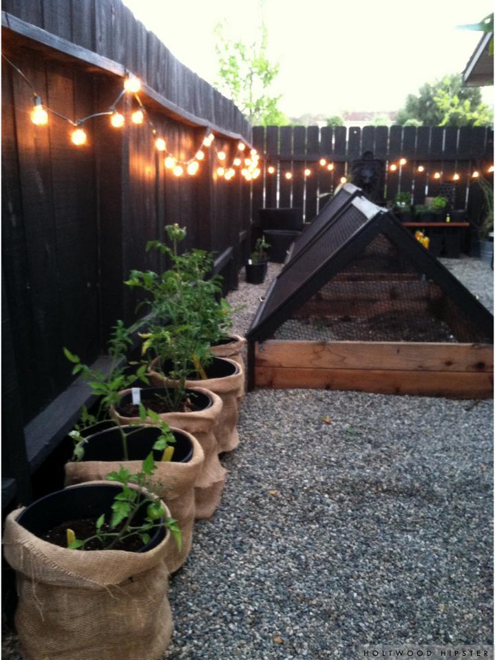 Holtwood House // Edibles Garden Progress