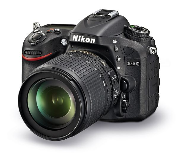 Ricoh R8 review | Beginner photography