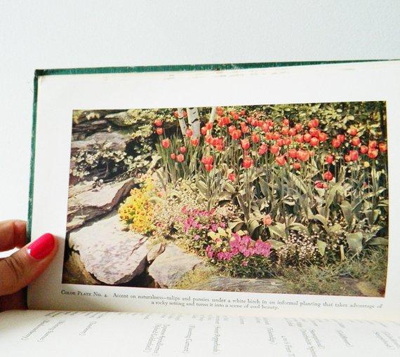 1950s Vintage Gardening Handbook Color Photos And Illustrations Mid Century Garden Book Collectible Botanical Book Vintage Gardening Illustration Vintage