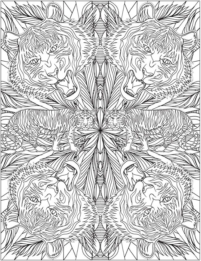 Animal Kaleidoscope Designs Coloring Book | Coloring pages 2nd ...