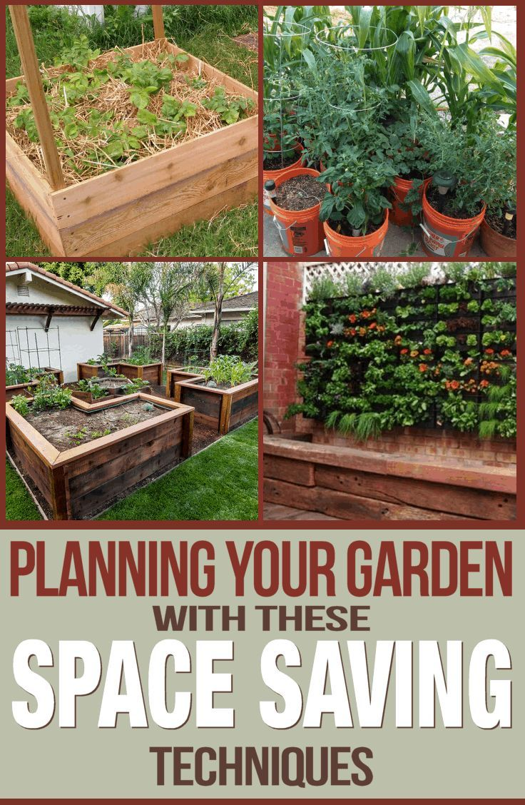 Planning Your Garden with Space Saving Techniques | Garden ...