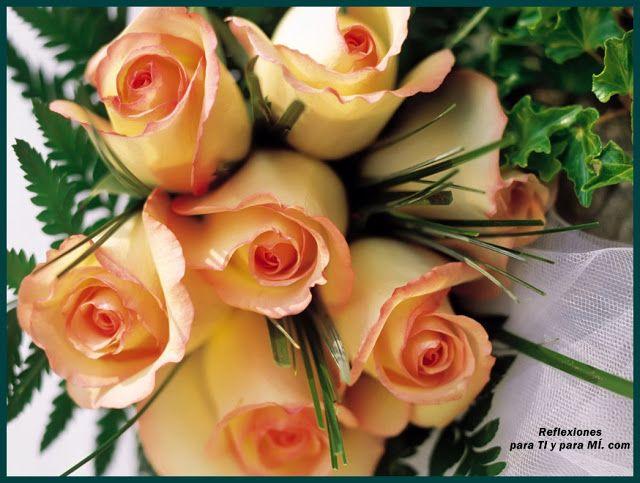 Buenos Deseos para TI y para MÍ: * Bello Ramo de Rosas color amarillo