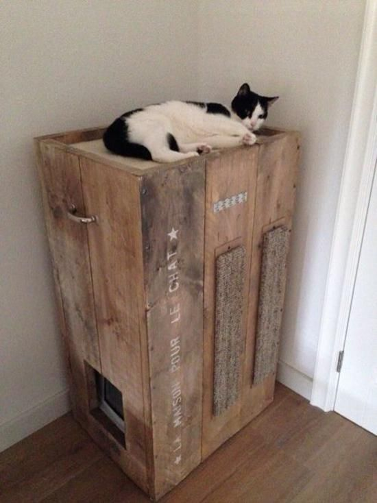 We All Know Cats Rule But Their Litter Bo Can Be An Eyesore Get Creative With These Cool Ways To Hide And Incorporate Your Kitty S Box Into