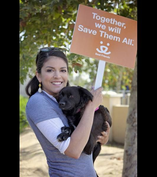 Cecily Strong And Dog Lucy Best Friends Pets Happy Animals Pets