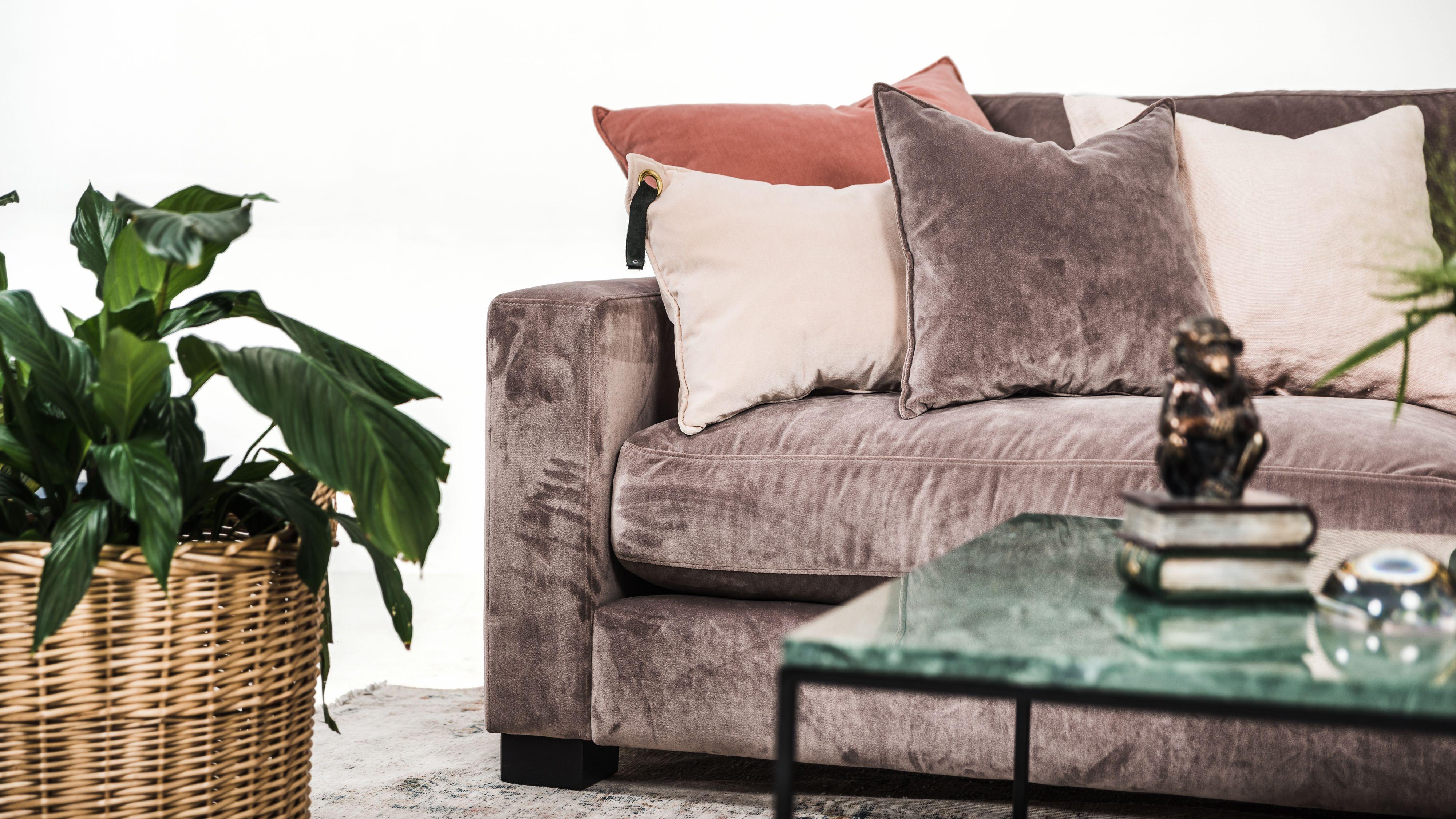 Mammuten sammetssoffa modul rosa sammet soffa t