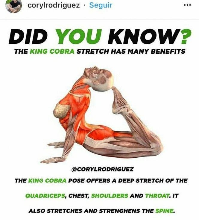 King Cobra Yoga Pose Doingyoga Doing Yoga Yoga Poses Yoga Poses