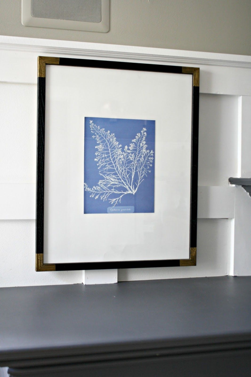 crayon framed for creating framing is drew conte a ikea drawing frame pretty matting poster artist on am artwork matted mats me so img art this one beautiful found at project easy and i budget