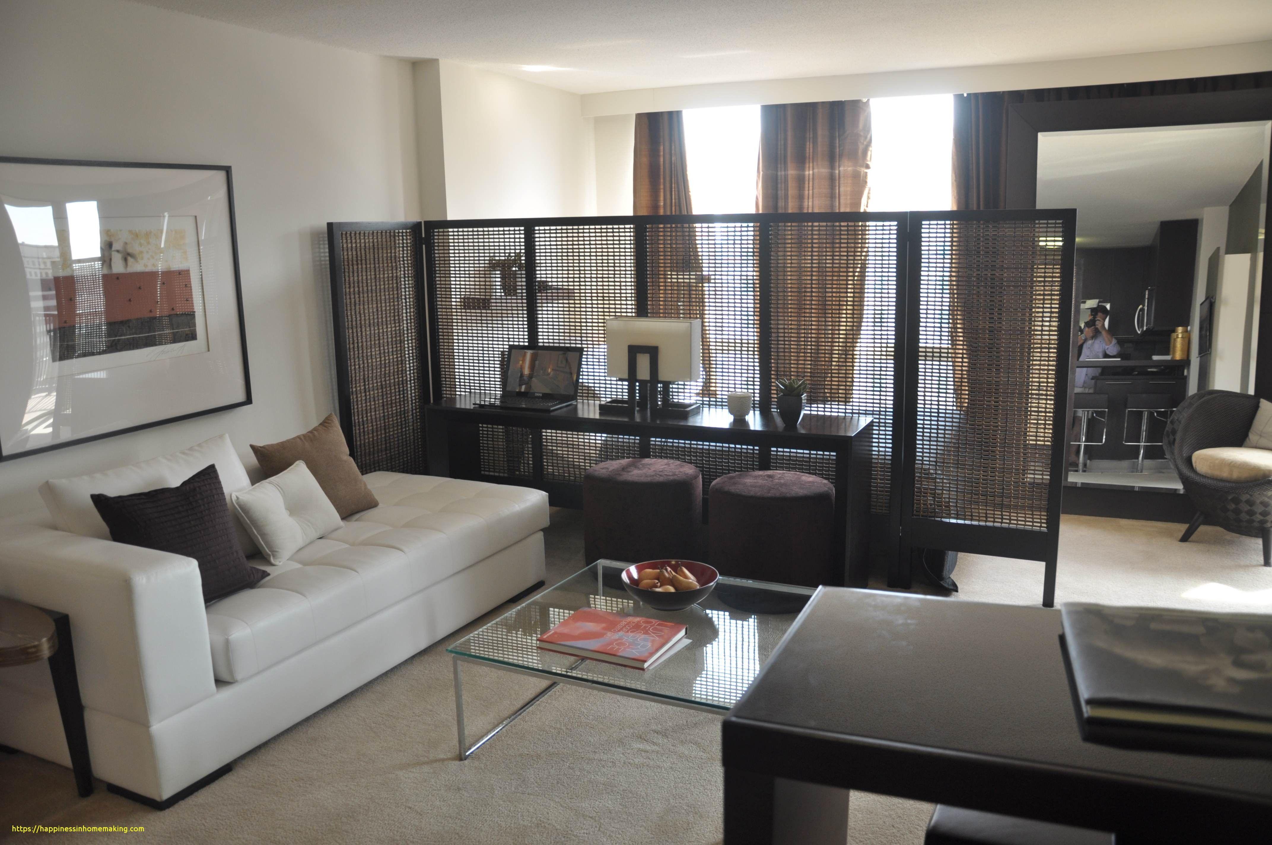 Amazing Photo Of Efficiency Apartment Ideas Efficiency Apartment