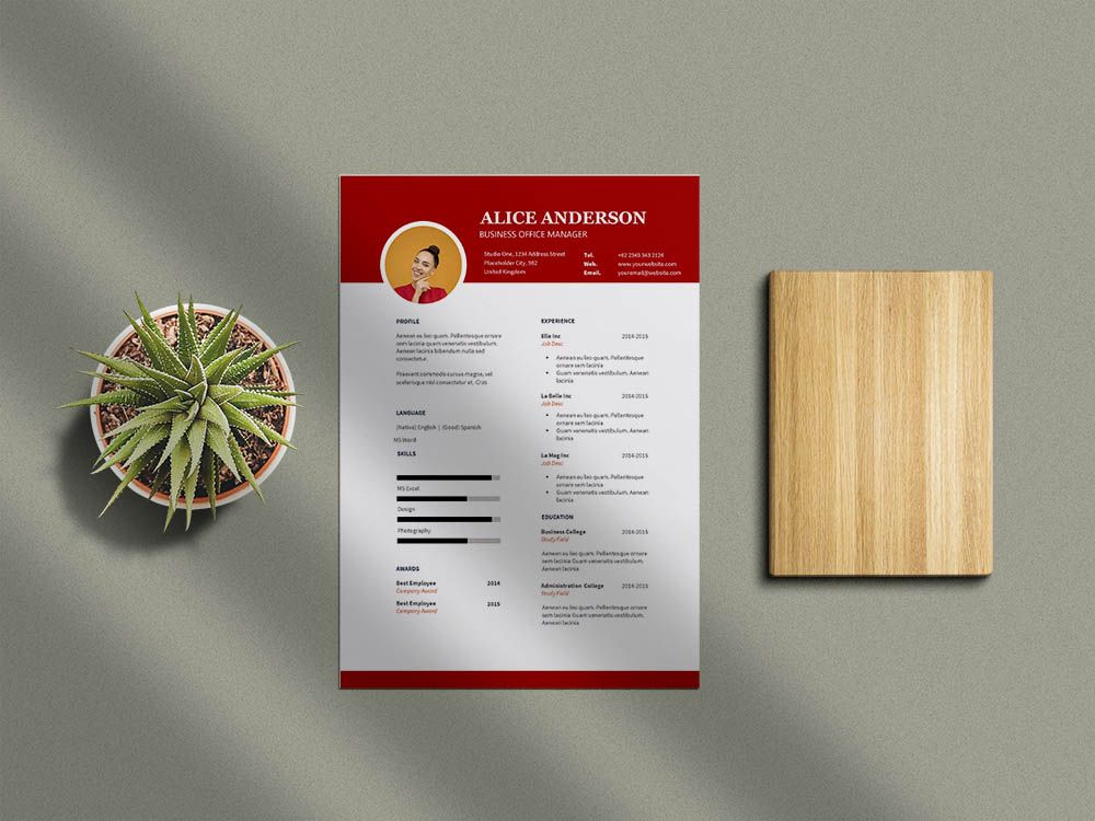 Free business office manager resume template for job