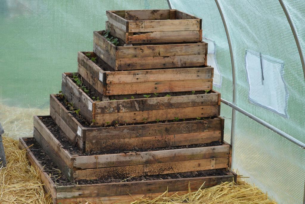 cascade fraise pyramide jardinage fraisier fraise et. Black Bedroom Furniture Sets. Home Design Ideas
