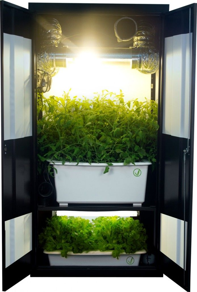 closet grow box i really like this system it is an