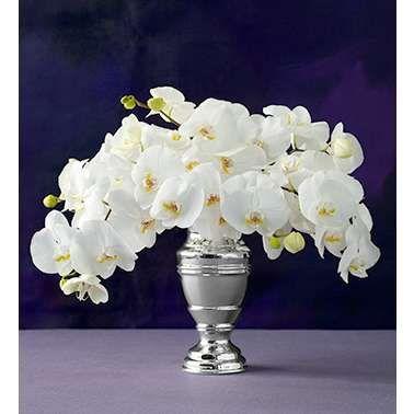 Best 25 White Orchid Centerpiece Ideas On Pinterest