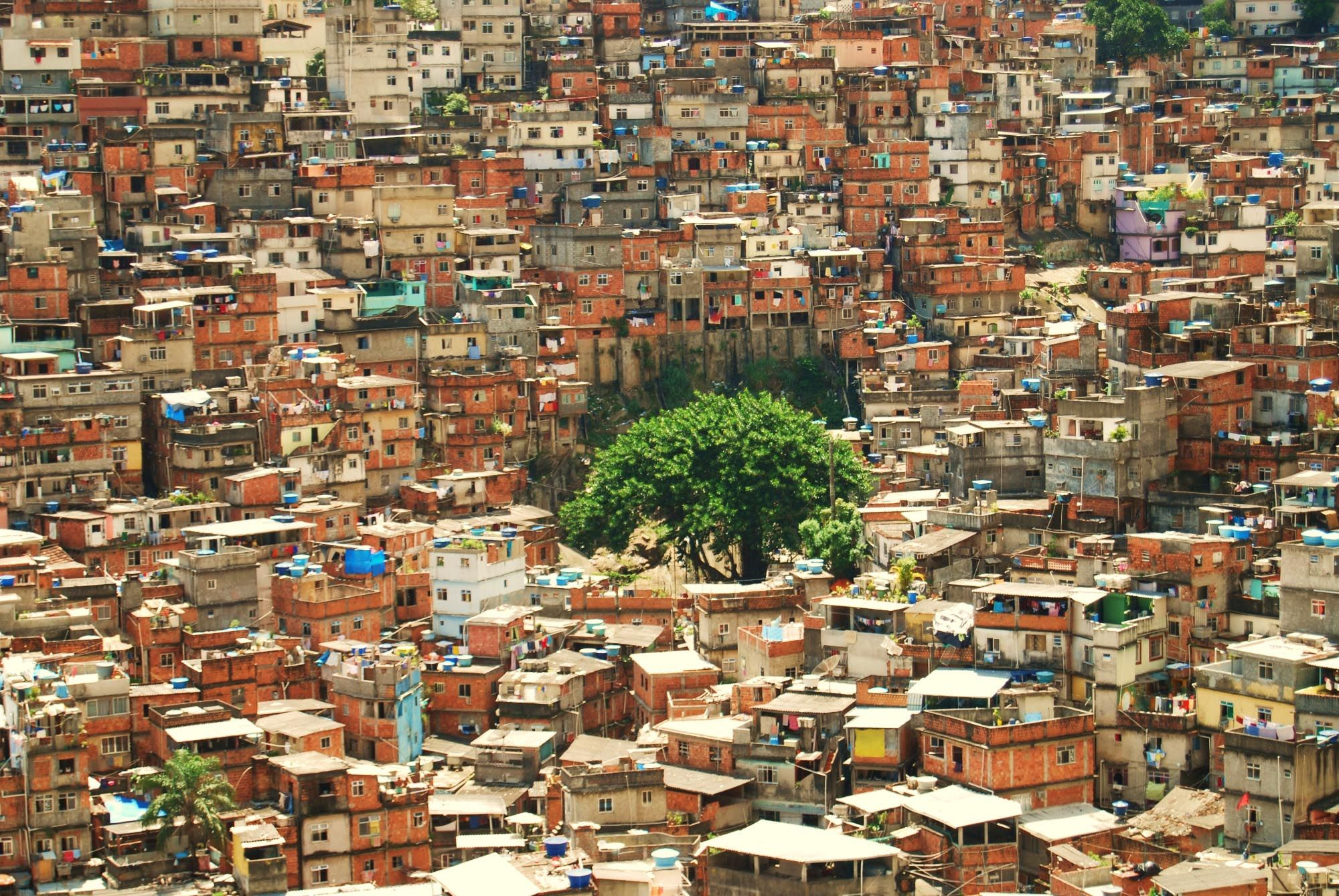 Complexo de Alemao - (2nd Area - 9 Months)