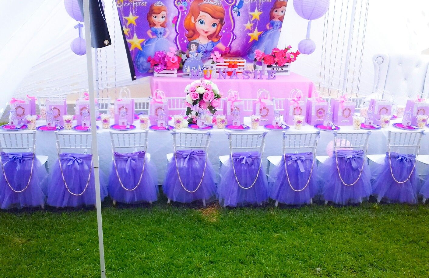 Sofia the 1st party