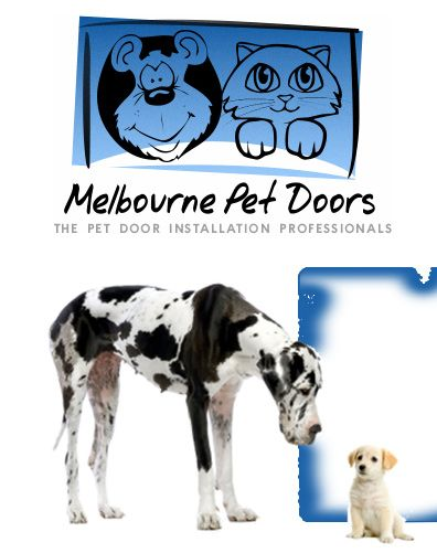 Melbourne Pet Doors Glass Pet Doors Cat Flaps Dog Doors Pet Door Installation Pet Doors Dog Door