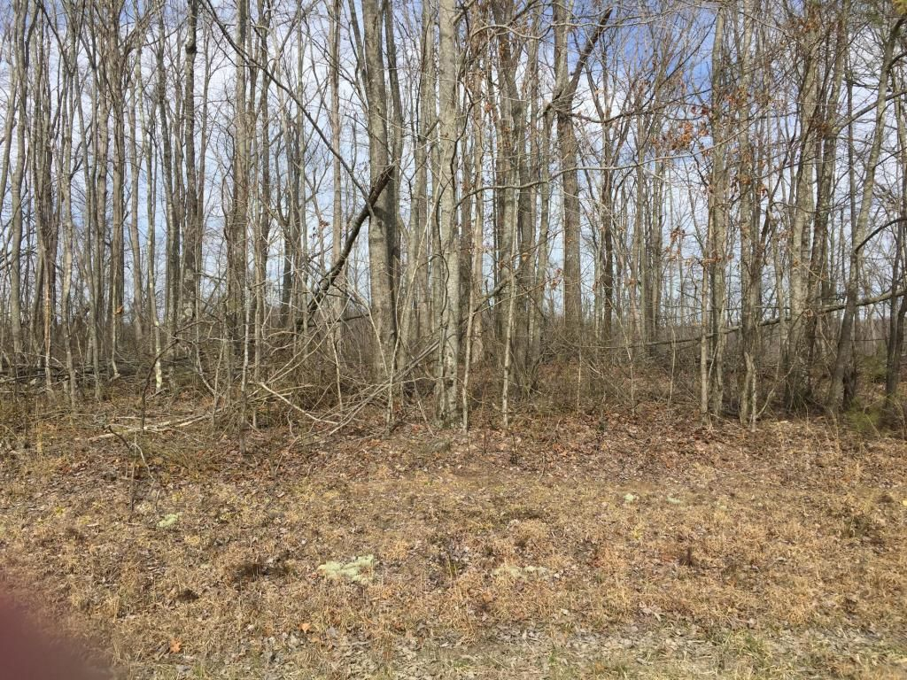 Tennessee putnam county monterey - View Listing Details Photos And Virtual Tour Of The Land For Sale At Street Place Loop Monterey Tn At