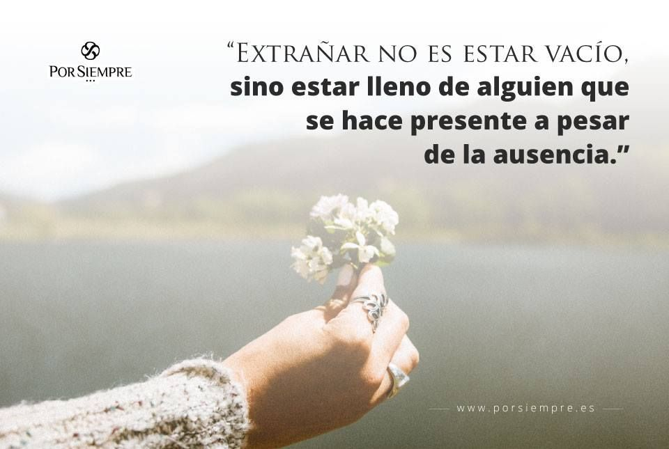 Pin On Frases Positivas