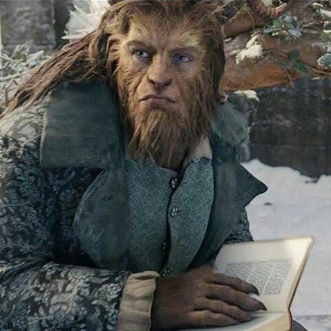 I LOVE that in this one the Beast is as voracious a reader as Belle is. More common ground & it never made sense that he's been stuck in the castle this whole time & has little else to do all day.