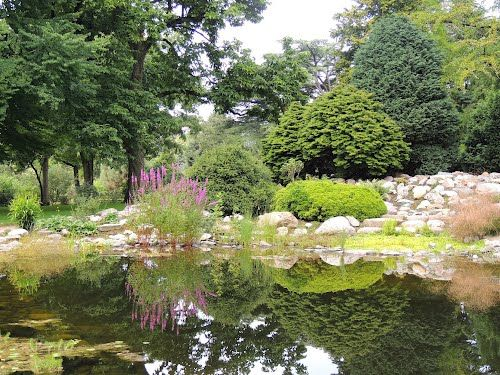 Arboretum De Dreijen, Wageningen (foto: Ria Wentink op Panoramio) | Botanische tuin, Tuin