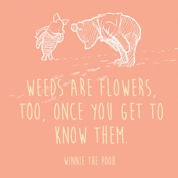 Weeds Children Book Quotes Best Friend Quotes Meaningful Friends Quotes