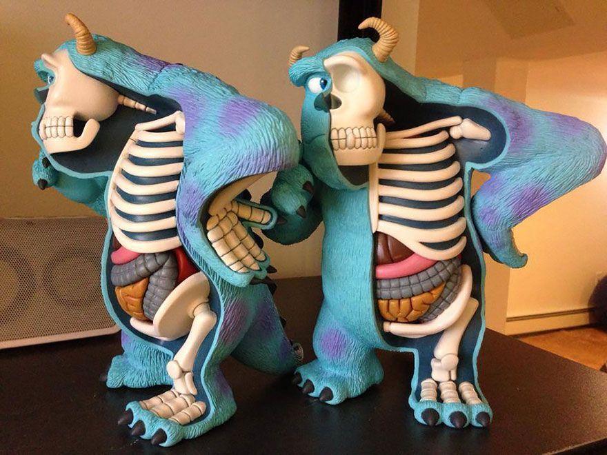 What\'s Inside Your Favorite Childhood Toys? | Anatomy bones, Anatomy ...