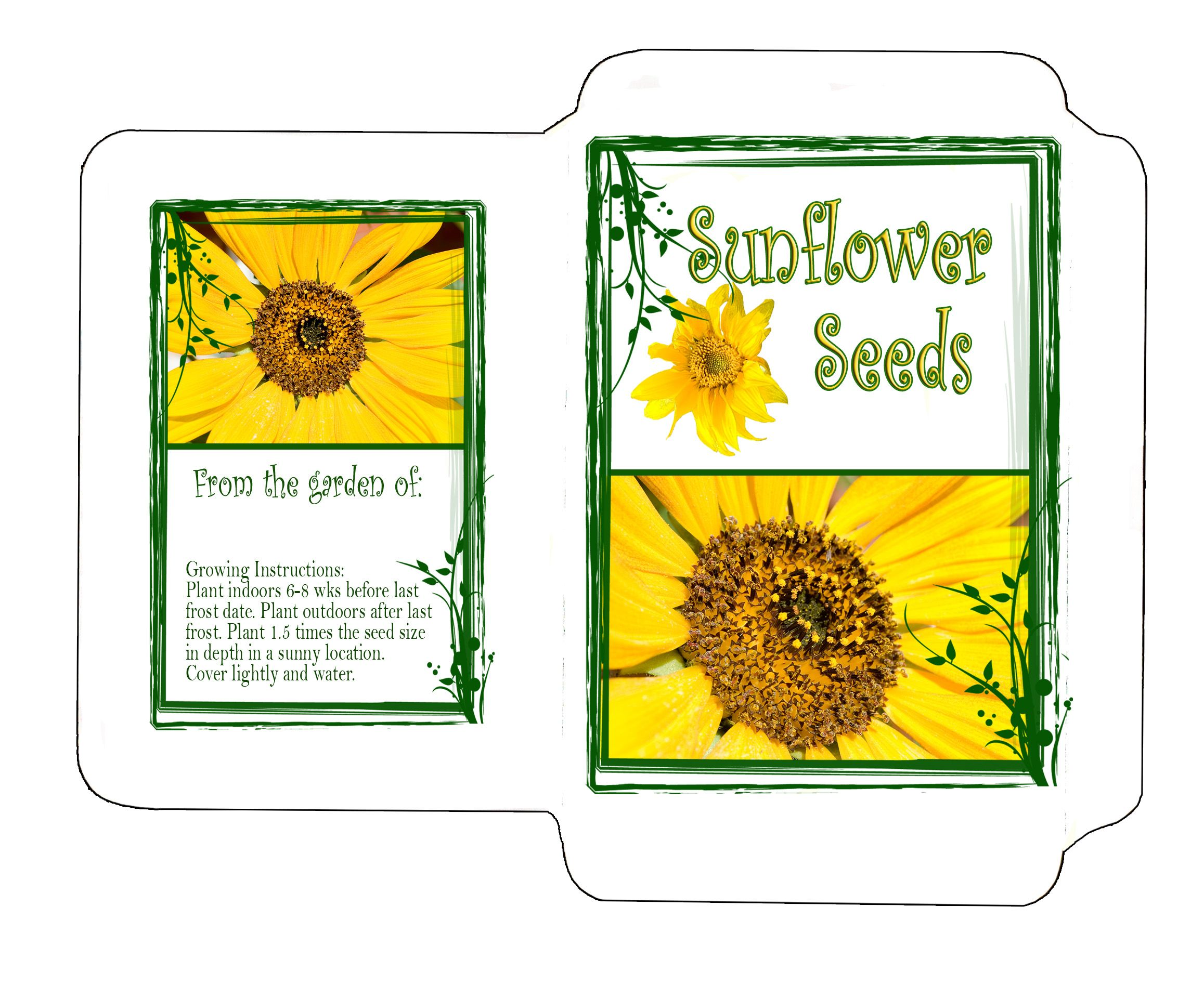 JPG SEED PACKET HERE Photo Envelope Template SEEDS OF FAITH - Seed packet template