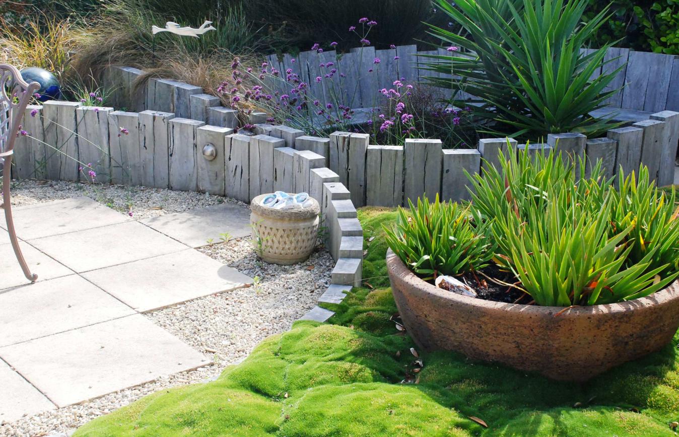 Windy beach garden wellington | Garden Design | Pinterest | Gardens
