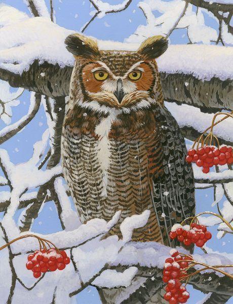 Great Horned Owl Art Licensing Owl Posters Great Horned Owl Owl Art