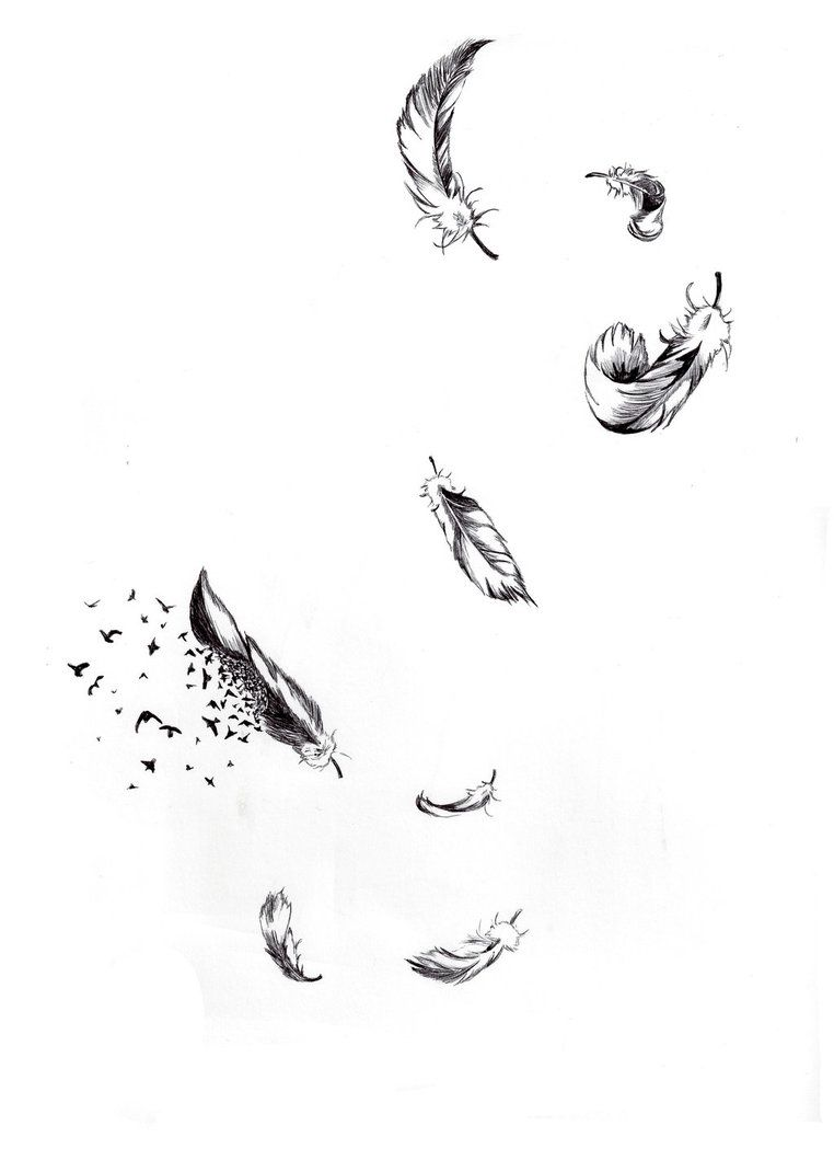 falling feathers by n00b wing ink inspiration pinterest
