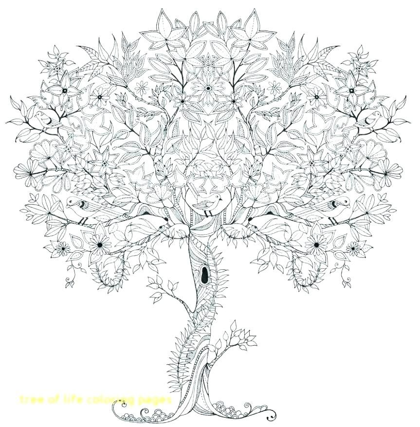 tree of life coloring pages for adults with mandala Tree