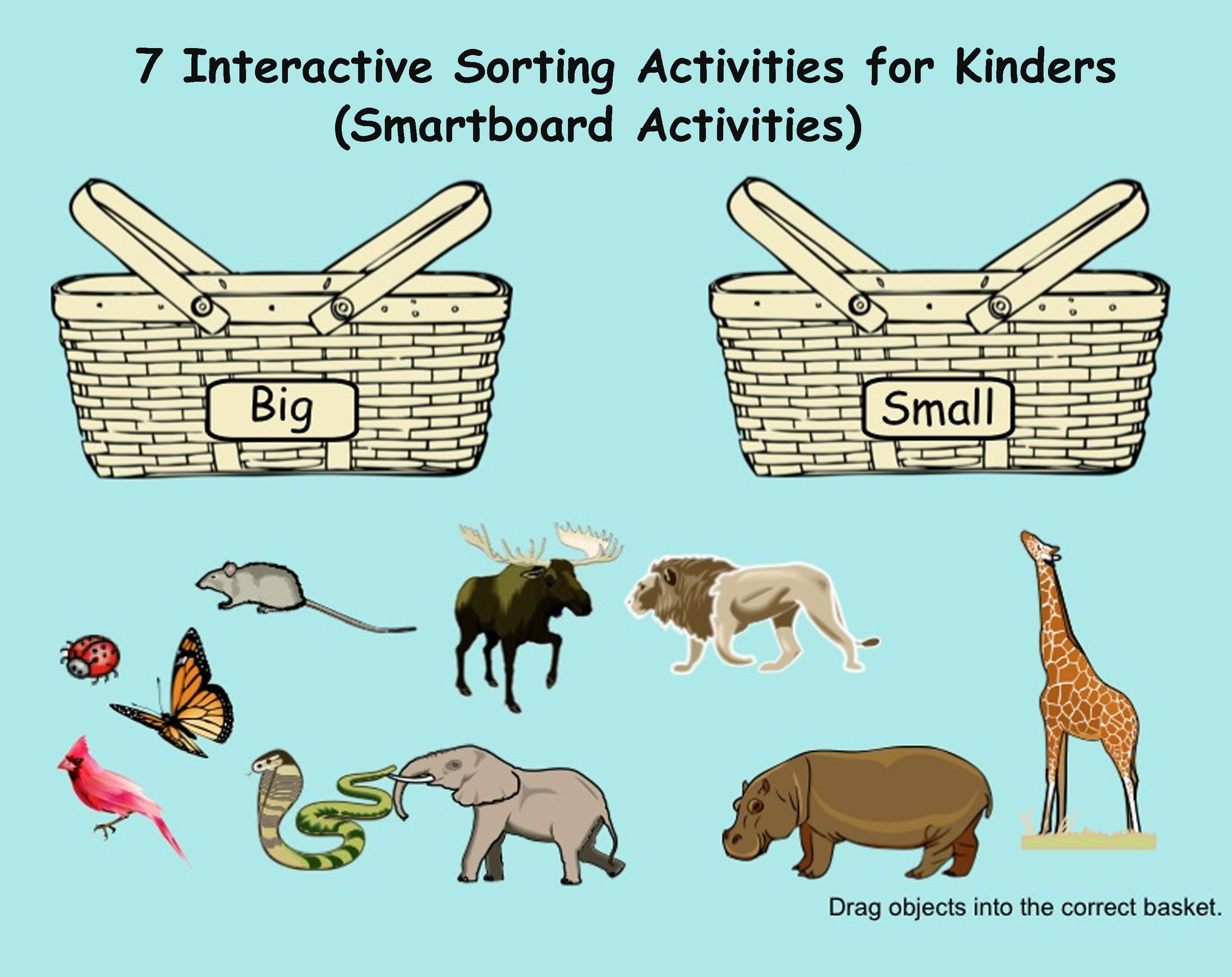 Smartboard Kindergarten Sorting Shapes Numbers With